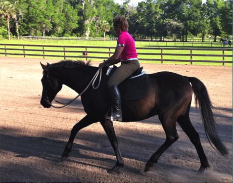 5 Bewezen succesvolle stappen om je paard te helpen met zijn balans 2
