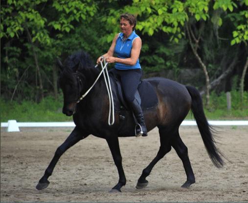 5 Bewezen succesvolle stappen om je paard te helpen met zijn balans 3