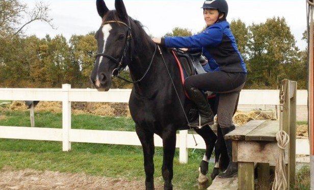Geeft jouw paard echt groen licht voor opstijgen - 5 tips voor opstijgen met gemak