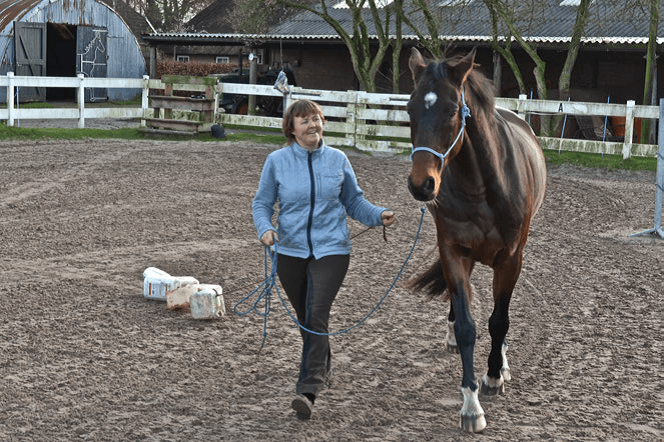 Voorbereiding op het Onverwachte 3 - Sport & Horsemanship United