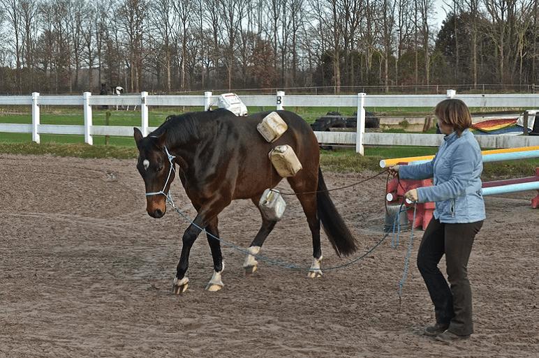 Voorbereiding op het Onverwachte 4 - Sport & Horsemanship United