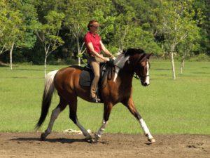 Sport Horsemanship onlosmakelijk met elkaar verbonden 3