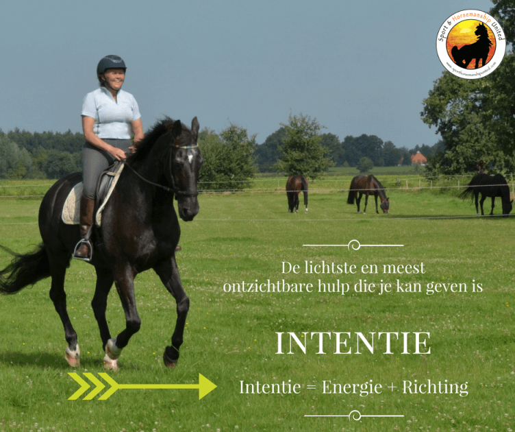 Intention first - Sport Horsemanship United
